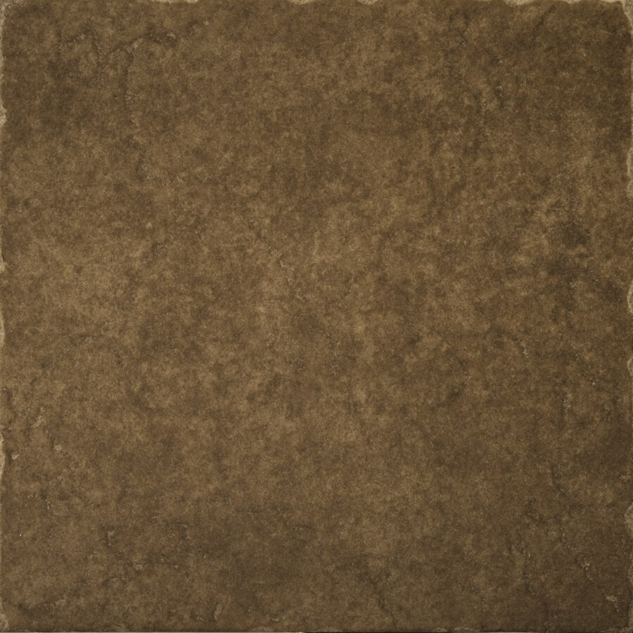 Emser Genoa 11-Pack Pinelli Porcelain Floor and Wall Tile (Common: 13-in x 13-in; Actual: 12.99-in x 12.99-in)