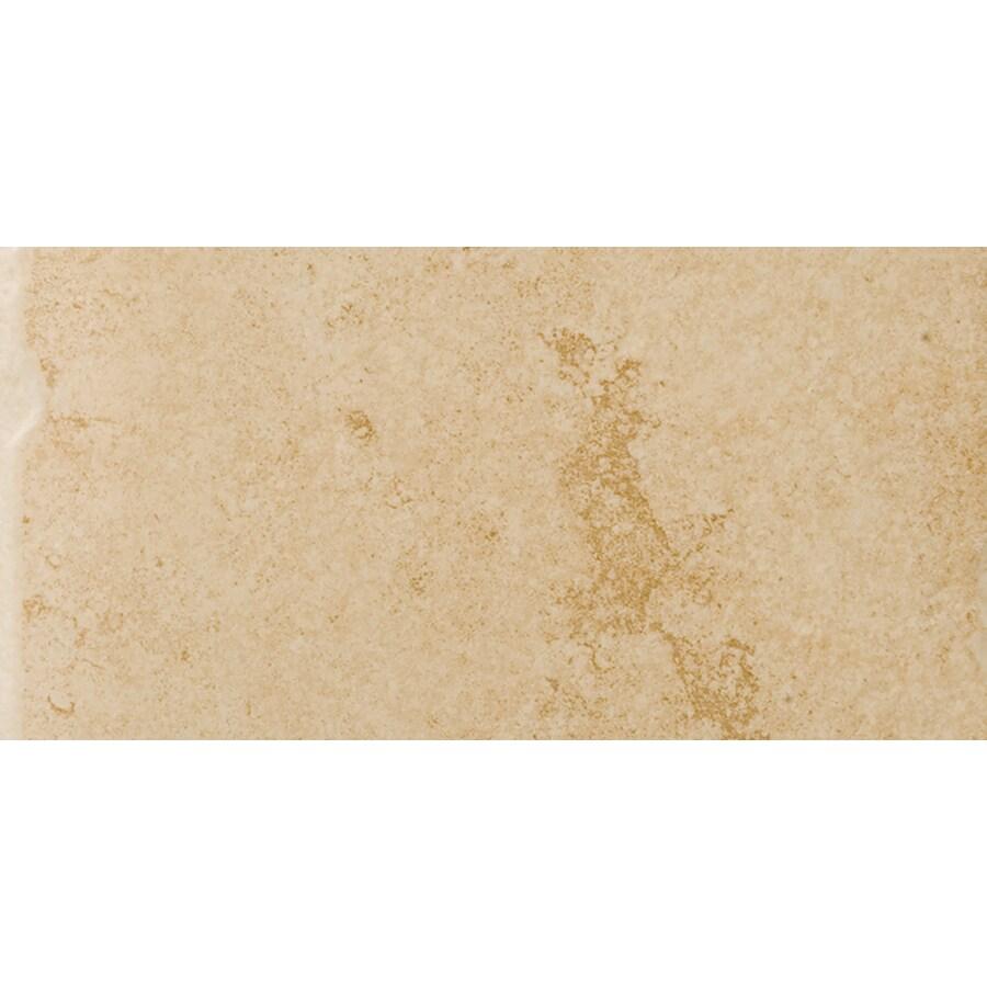 Emser Genoa 8-Pack Albergo Porcelain Floor and Wall Tile (Common: 12-in x 24-in; Actual: 11.73-in x 23.5-in)