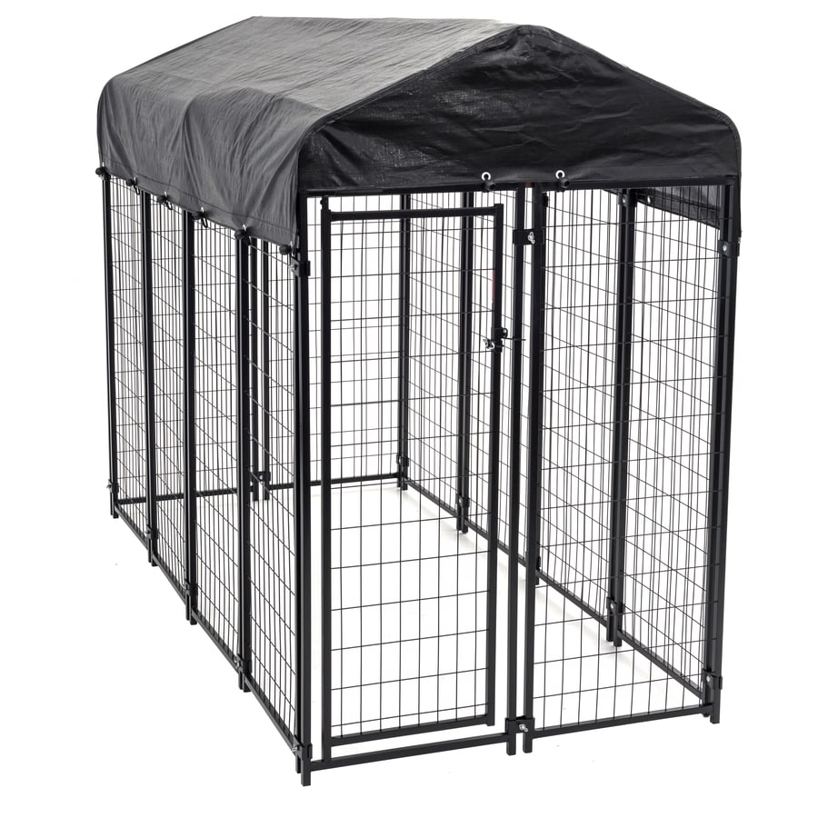 Shop 8 ft x 4 ft x 6 ft outdoor dog kennel box kit at for Outdoor dog kennel kits