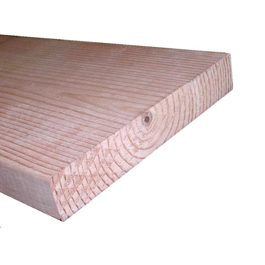 Top Choice (Common: 2-in x 10-in x 10-ft; Actual: 1.4687-in x 9.2187-in x 9.875-ft) Lumber