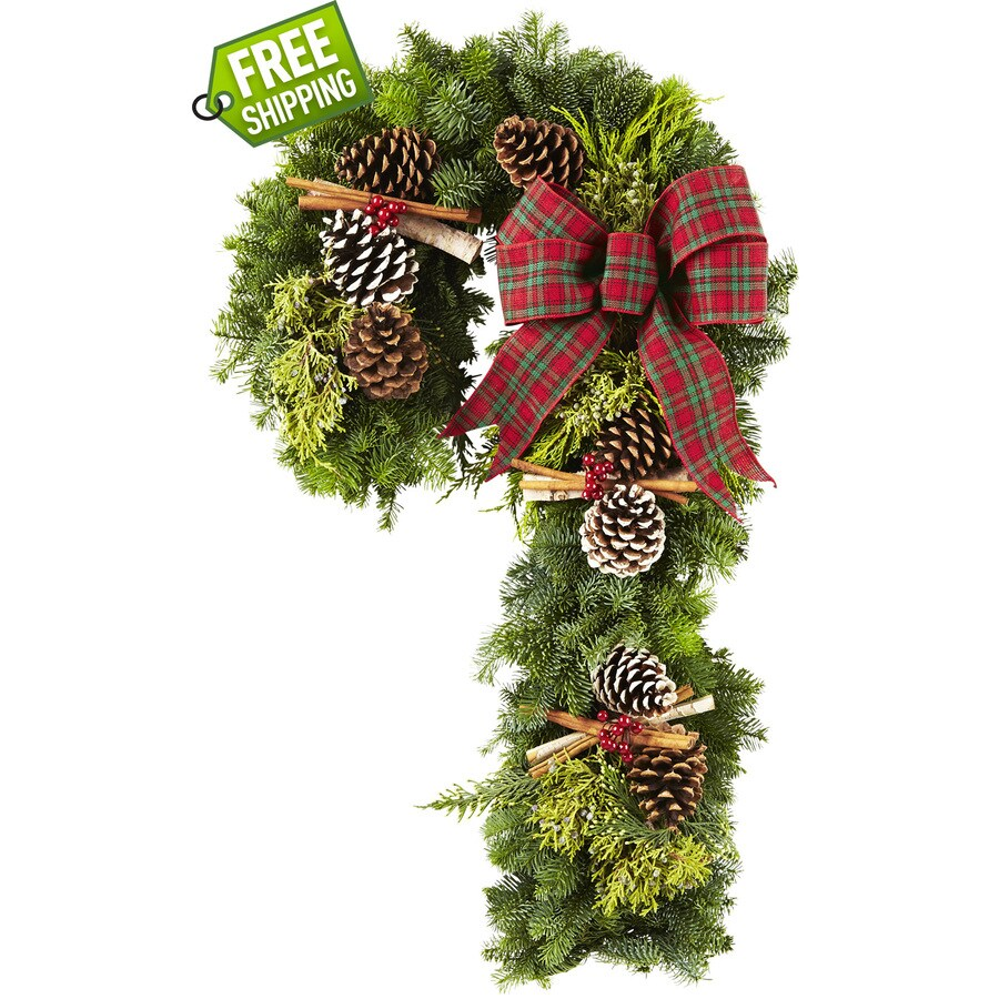 allen + roth 36-in Fresh-Cut Noble Fir Wreath