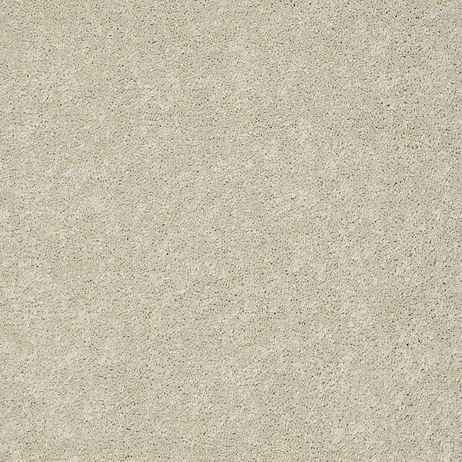 STAINMASTER PetProtect Baxter II Sadie Textured Indoor Carpet