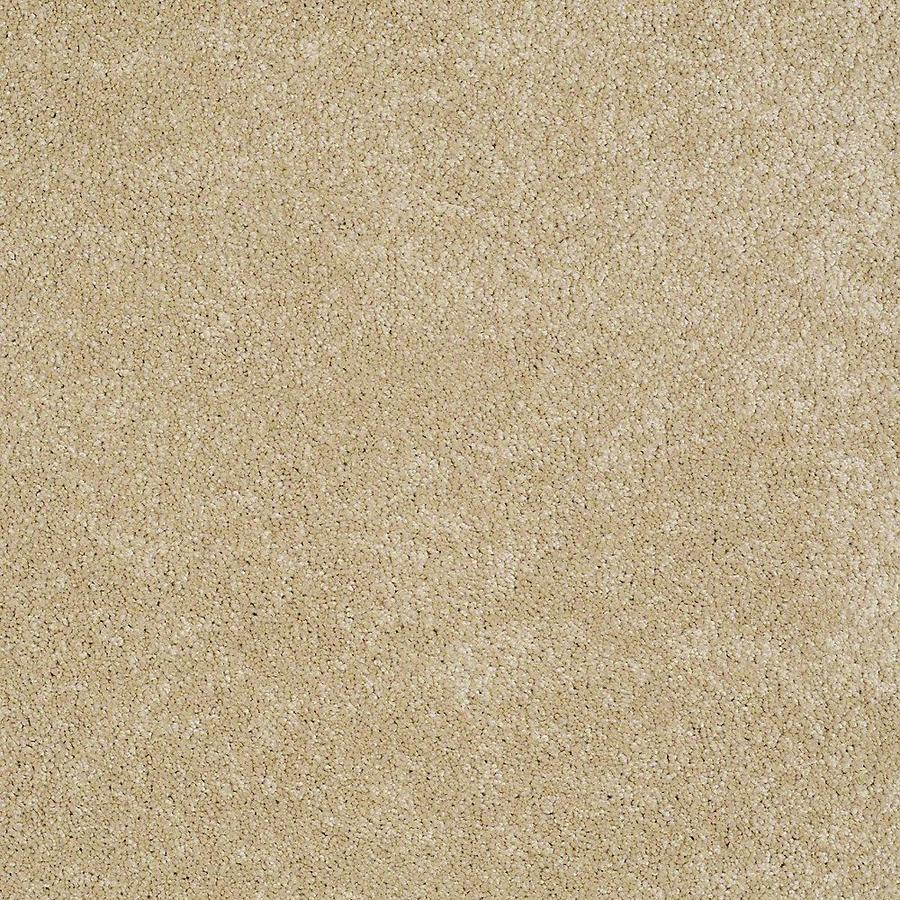 STAINMASTER PetProtect Baxter II Retriever Textured Indoor Carpet
