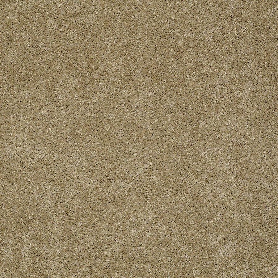 STAINMASTER PetProtect Baxter II Molly Textured Indoor Carpet