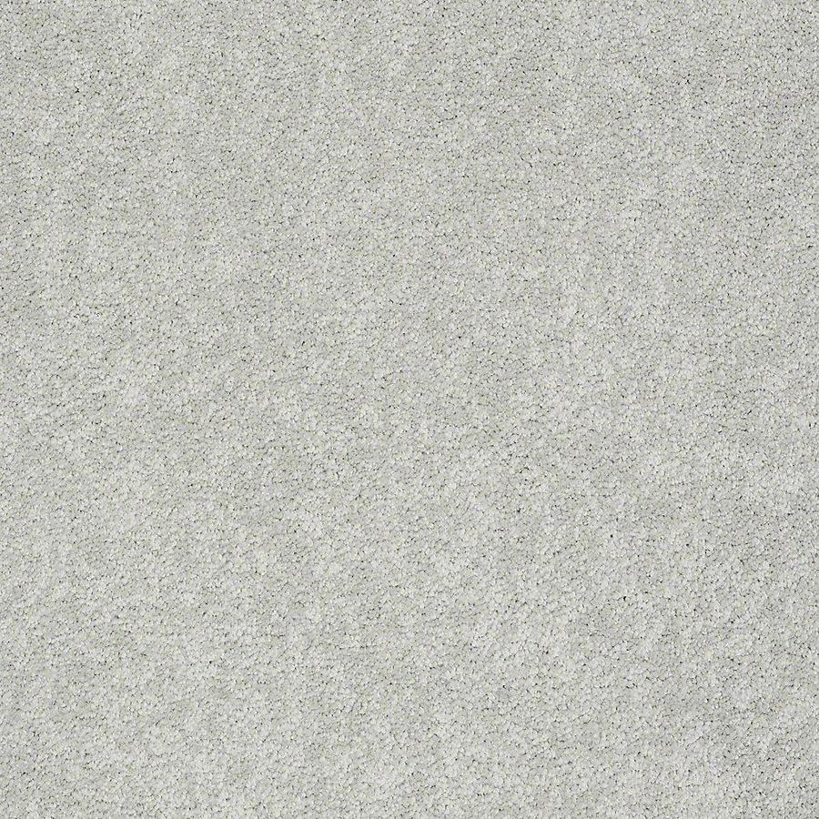 STAINMASTER PetProtect Baxter II Mac Textured Indoor Carpet