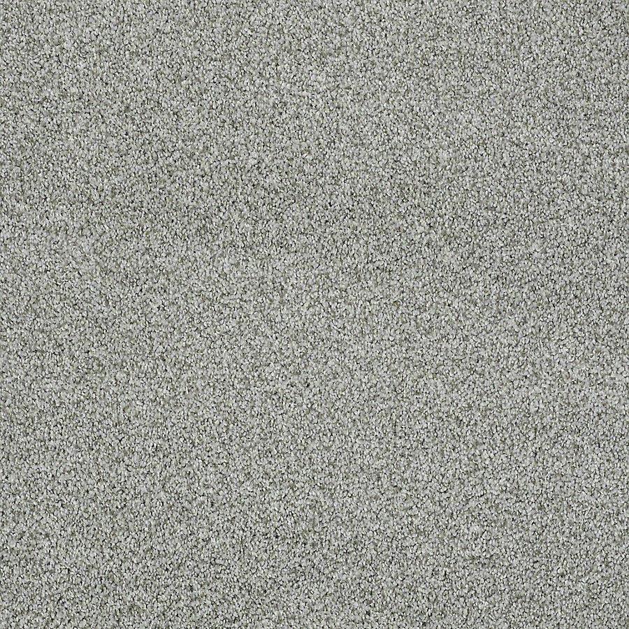 STAINMASTER PetProtect Baxter II Doodle Textured Indoor Carpet