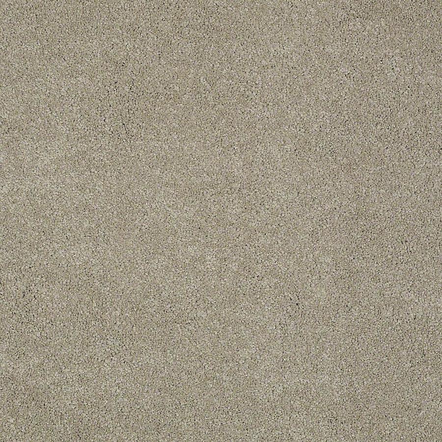 STAINMASTER PetProtect Baxter II Oliver Textured Indoor Carpet