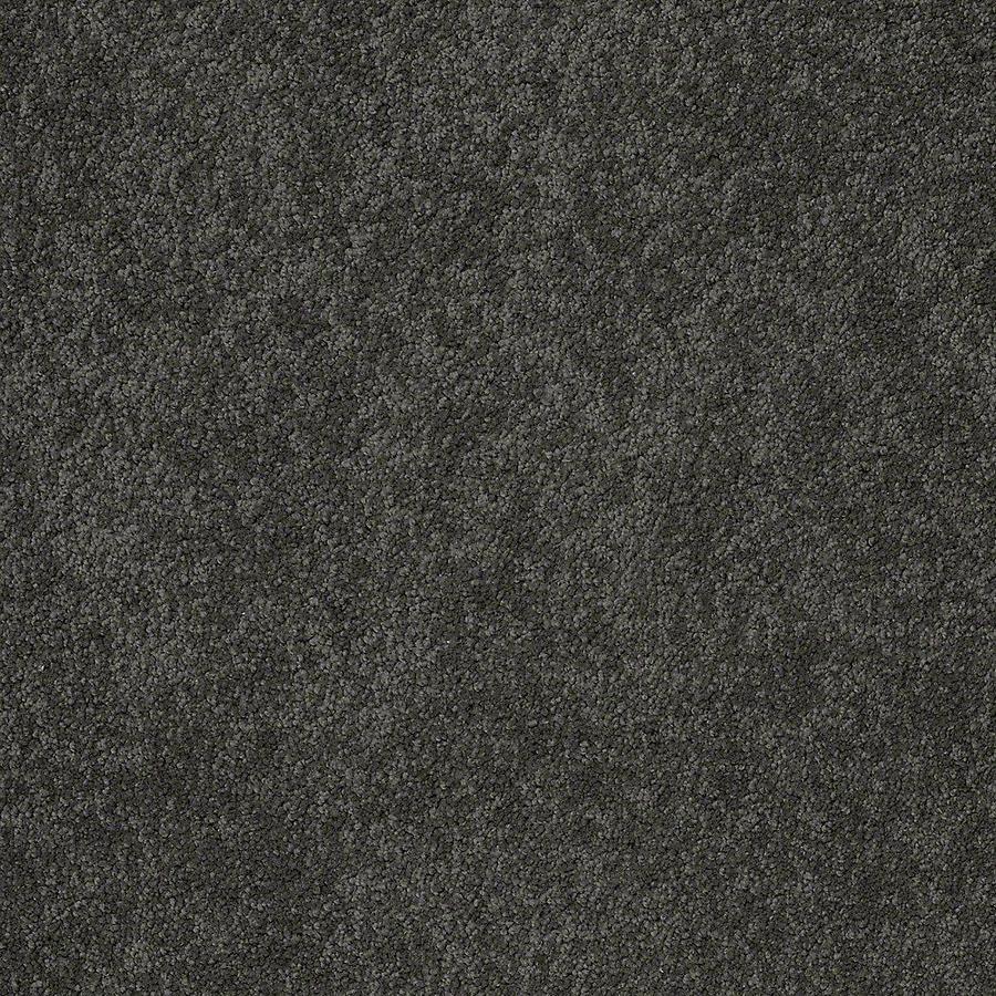 STAINMASTER PetProtect Baxter II Roxy Textured Indoor Carpet
