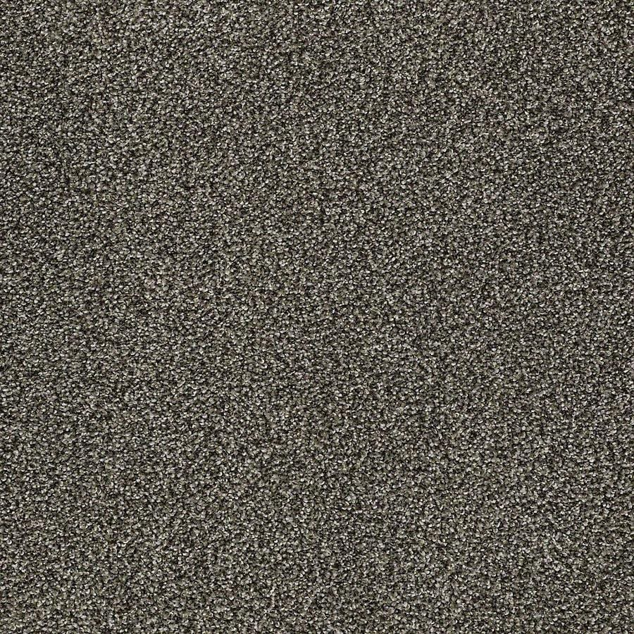 STAINMASTER PetProtect Baxter II Doberman Textured Indoor Carpet