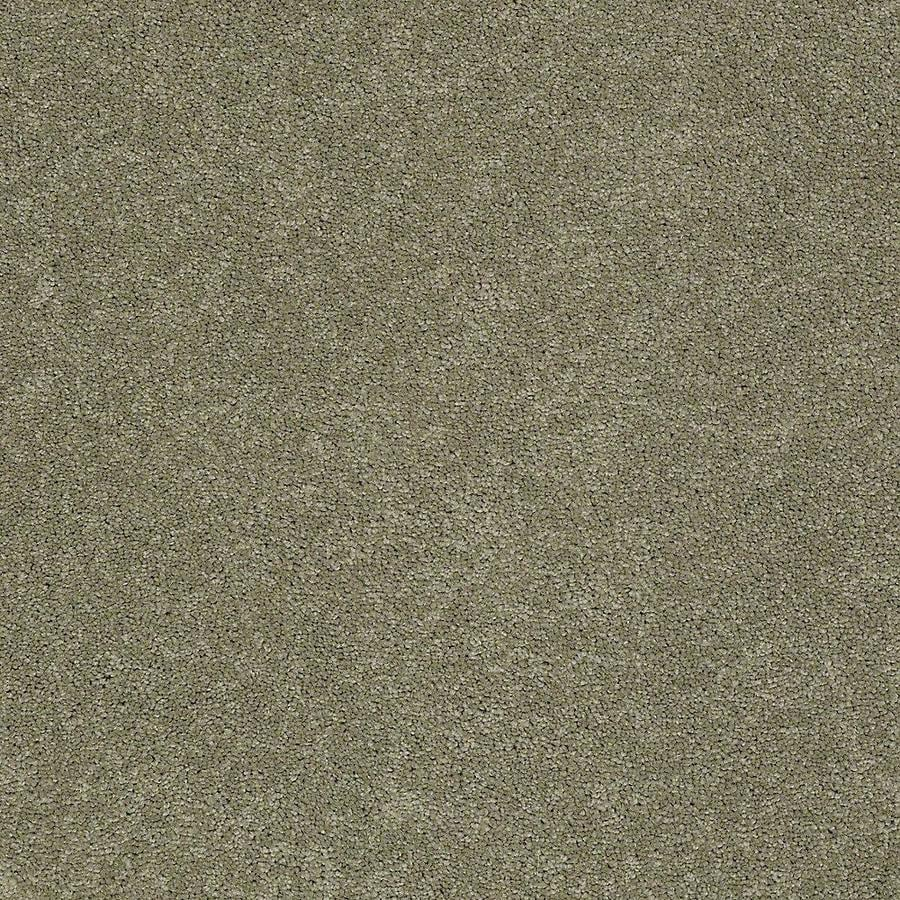 STAINMASTER PetProtect Baxter III Buddy Textured Indoor Carpet