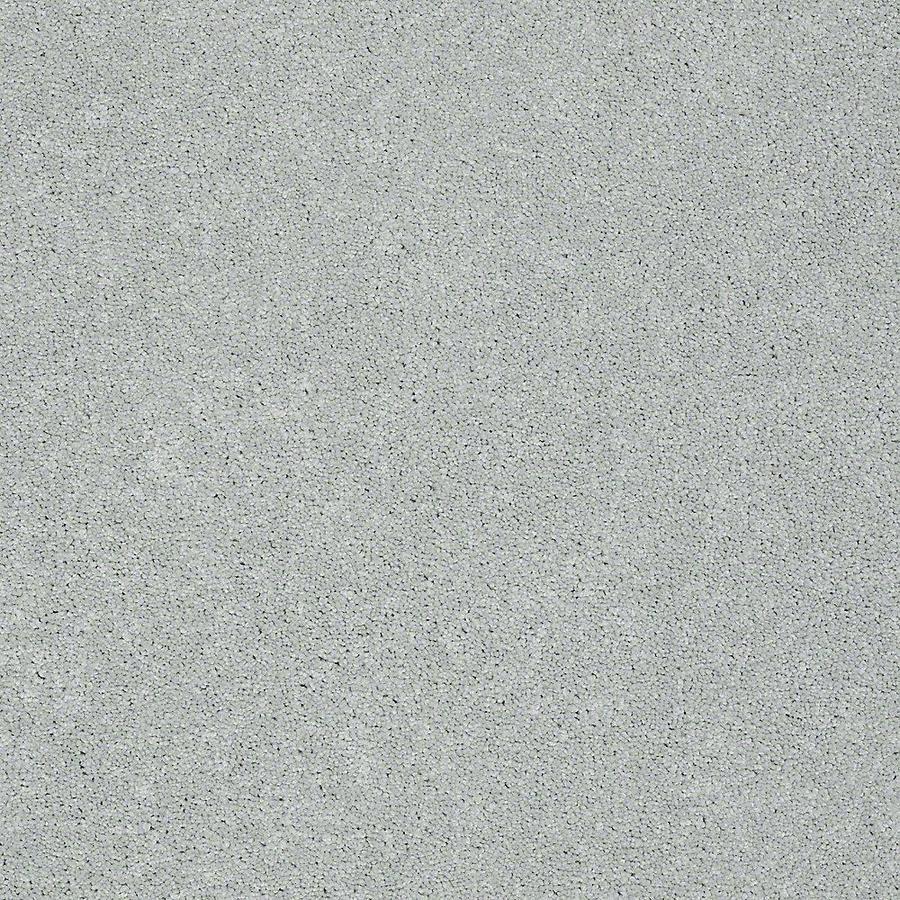 STAINMASTER PetProtect Baxter III Rex Textured Indoor Carpet