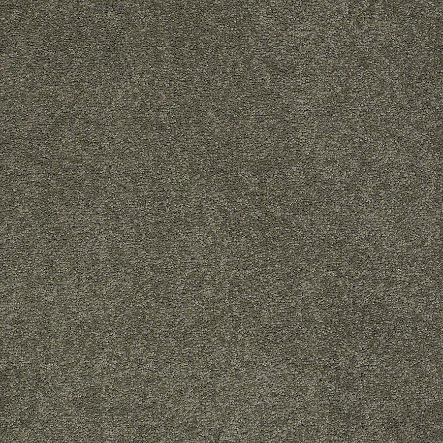 STAINMASTER PetProtect Baxter III Roxy Textured Indoor Carpet