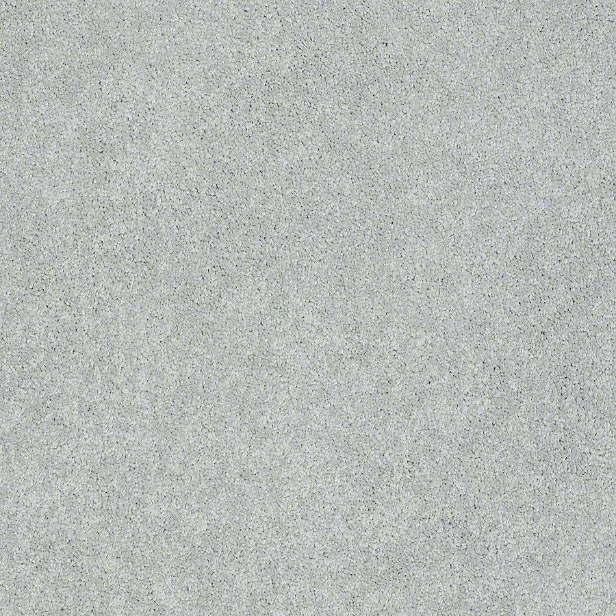 STAINMASTER PetProtect Baxter IV Rex Textured Indoor Carpet