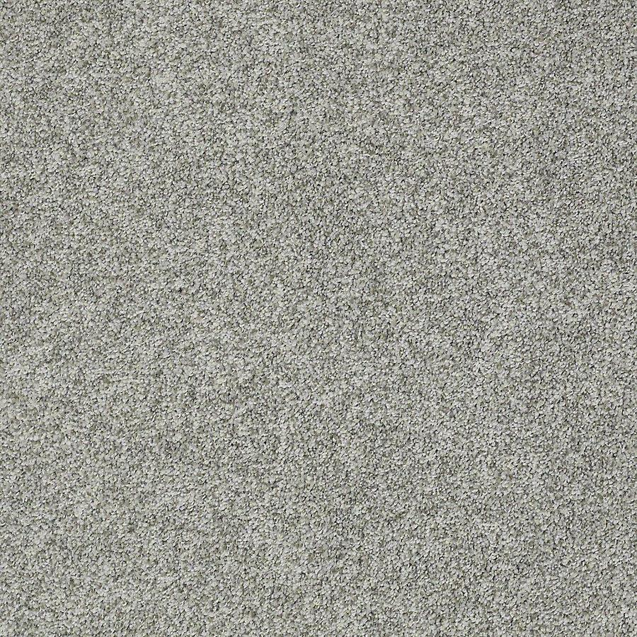 STAINMASTER PetProtect Baxter IV Roscoe Textured Indoor Carpet