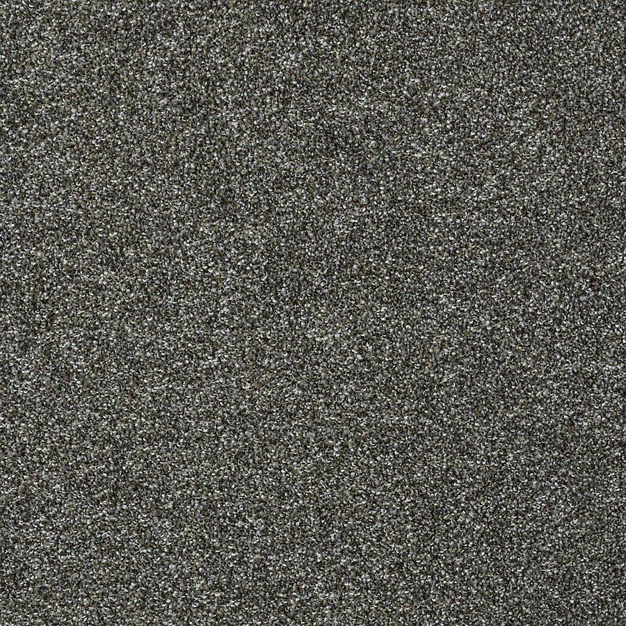 STAINMASTER PetProtect Baxter IV Roll Over Textured Indoor Carpet