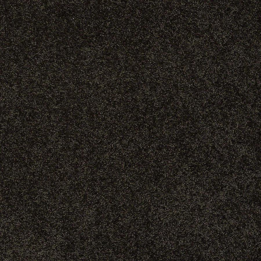 STAINMASTER PetProtect Baxter IV Bear Textured Indoor Carpet