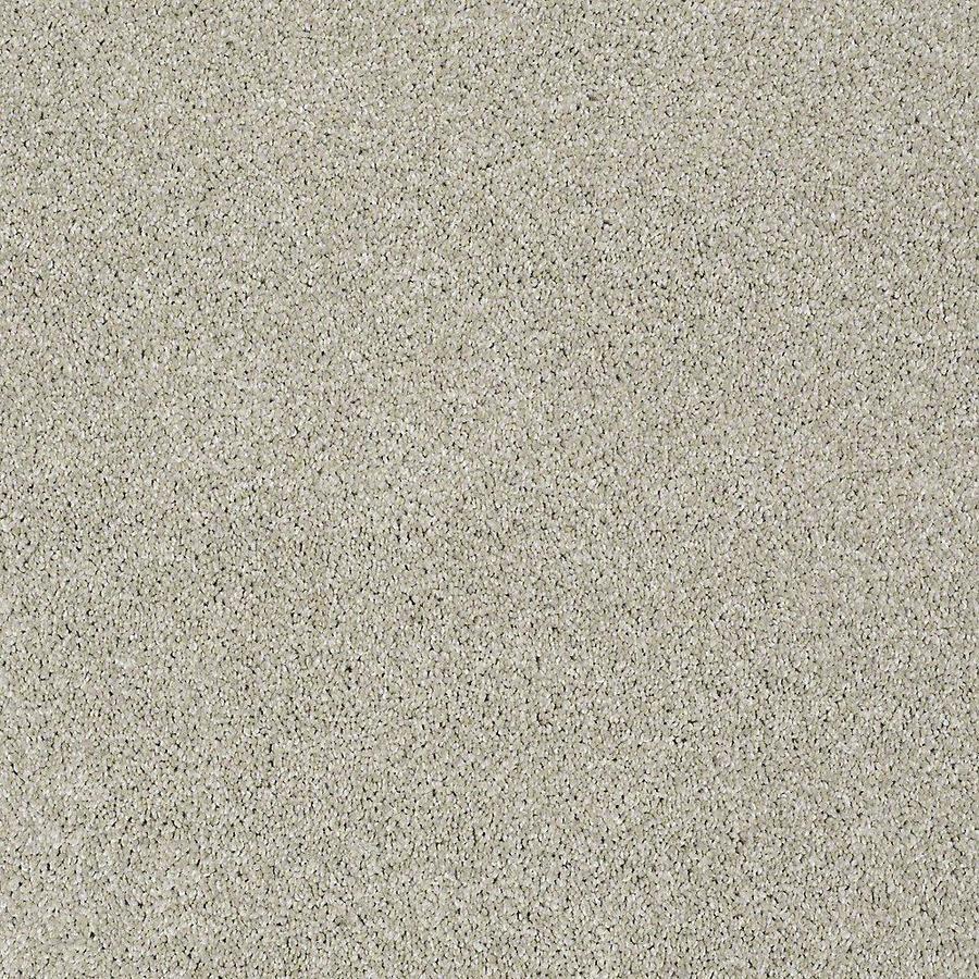 STAINMASTER PetProtect Baxter I Marmaduke Textured Indoor Carpet