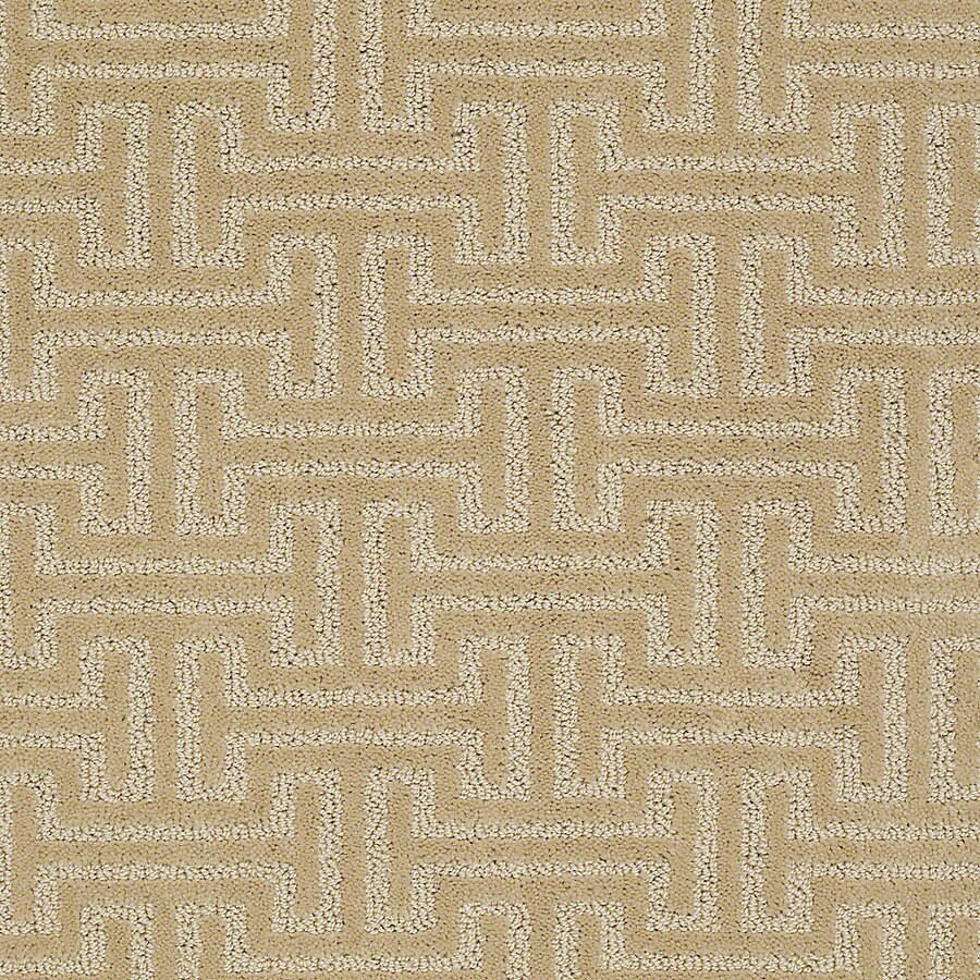 STAINMASTER PetProtect Belle Spike Berber Indoor Carpet