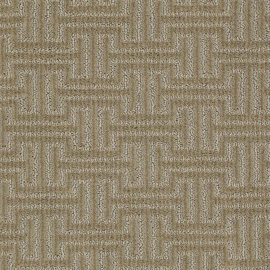 STAINMASTER PetProtect Belle Collie Berber Indoor Carpet