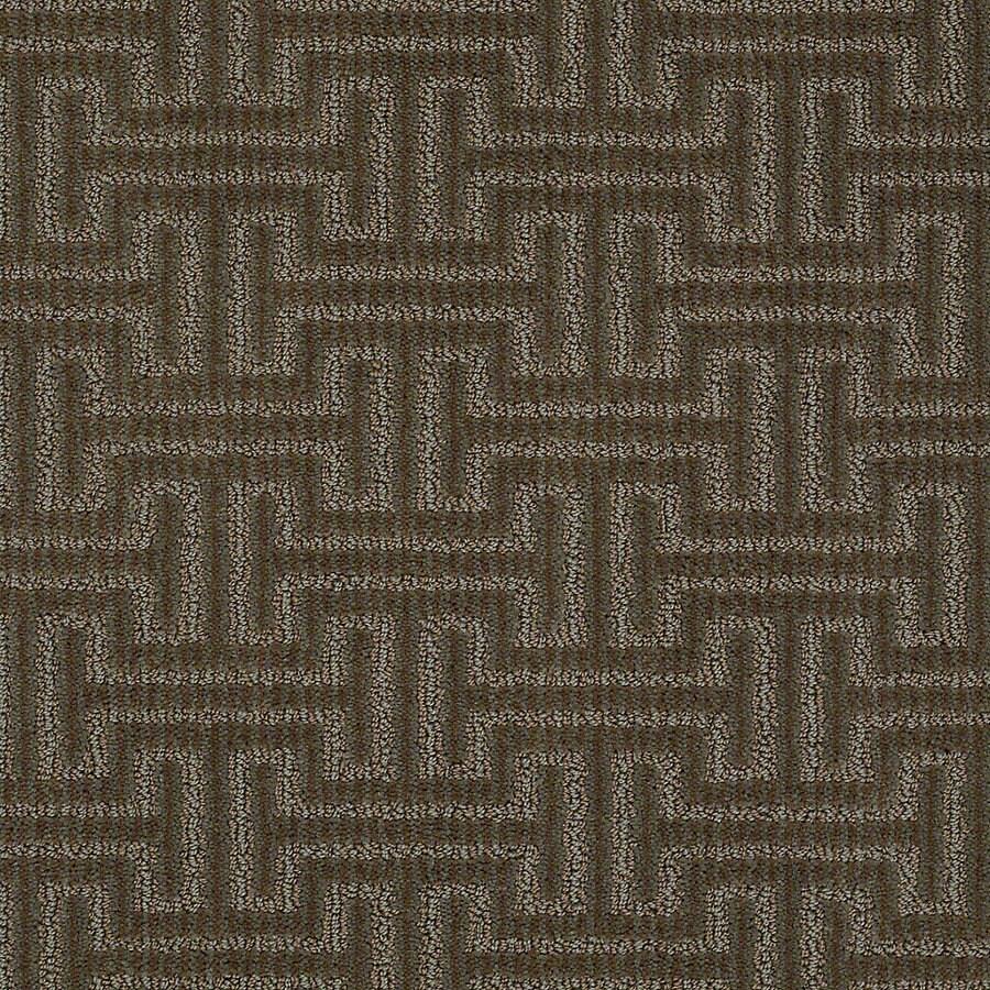 STAINMASTER PetProtect Belle Penny Berber Indoor Carpet At Lowescom