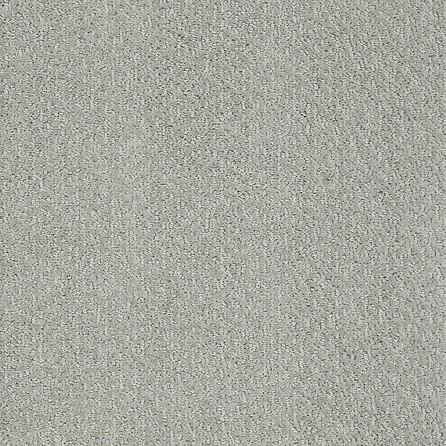 Shop stainmaster petprotect bianca louie berber carpet at for Berber carpet