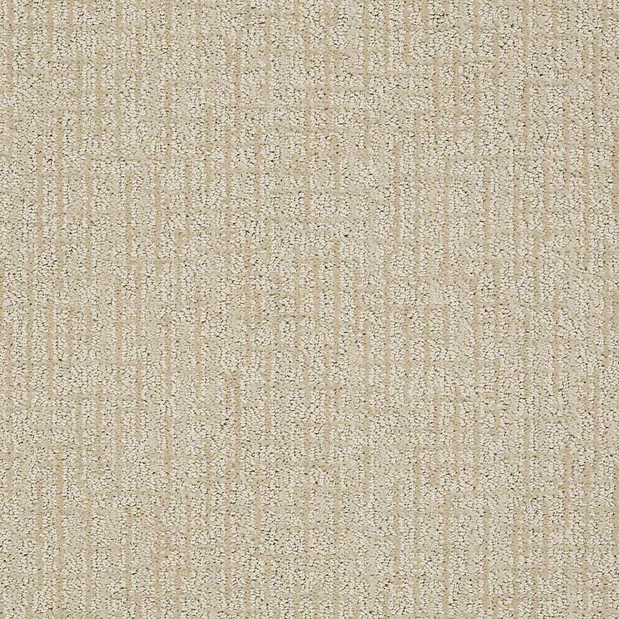 STAINMASTER PetProtect Bitzy Sheepdog Berber Indoor Carpet
