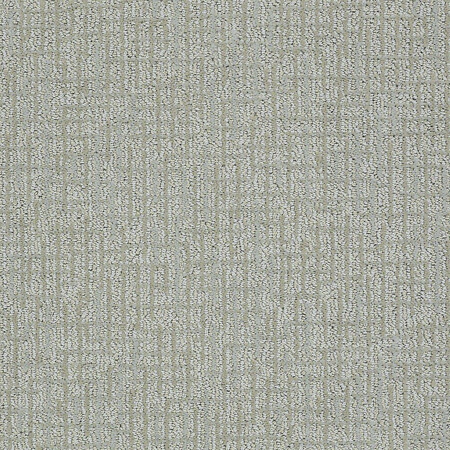 STAINMASTER PetProtect Bitzy Louie Berber Indoor Carpet