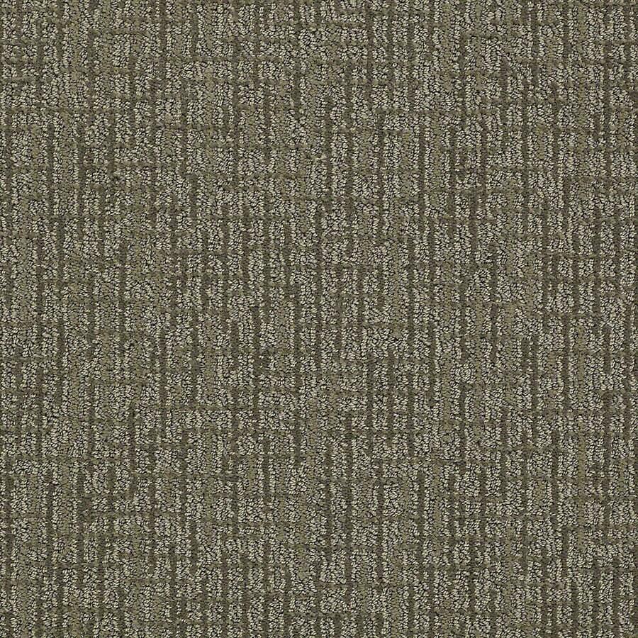 STAINMASTER PetProtect Bitzy Husky Berber Indoor Carpet