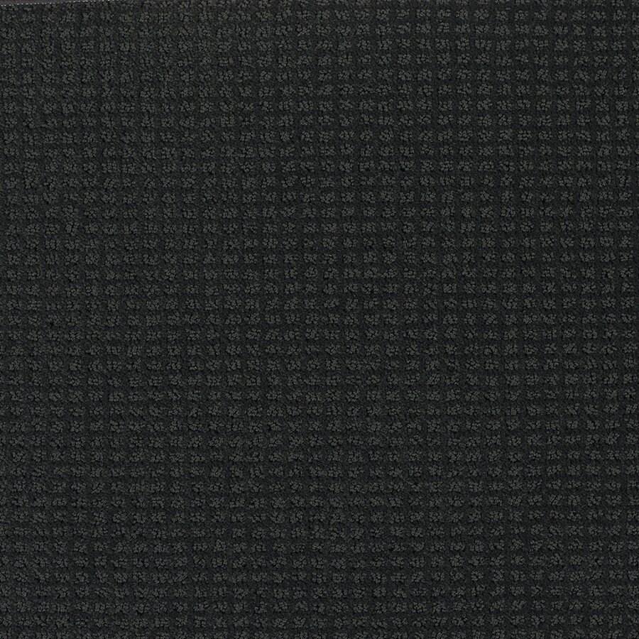 Shaw Black Fashion Forward Indoor Carpet