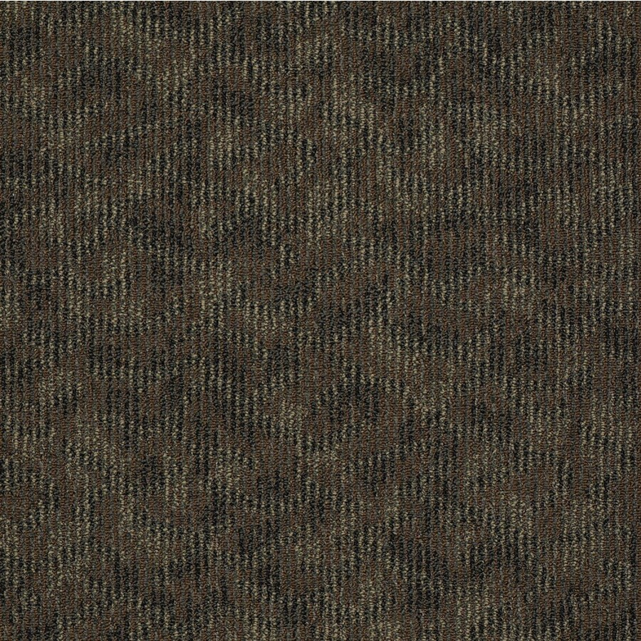 Home and Office Sequel Berber Indoor Carpet