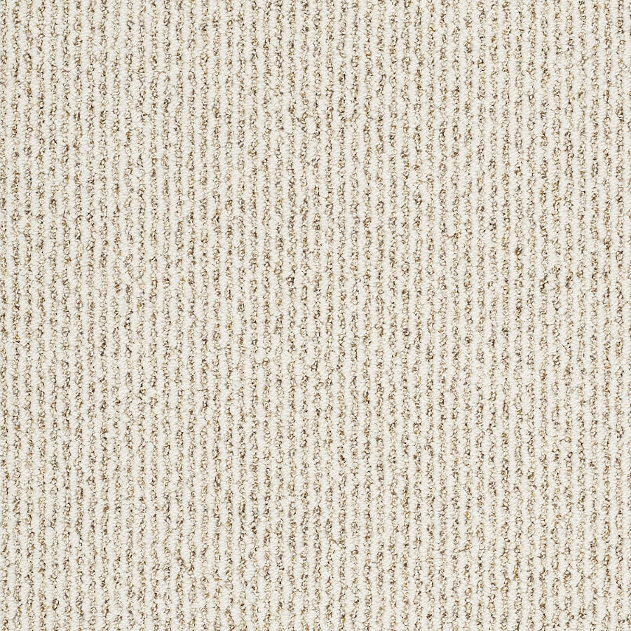 STAINMASTER TruSoft Shelburne (T) - Feature Buy Smooth Satin Berber Indoor Carpet