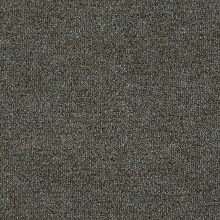 Shaw Home and Office Hummingbird Berber Outdoor Carpet