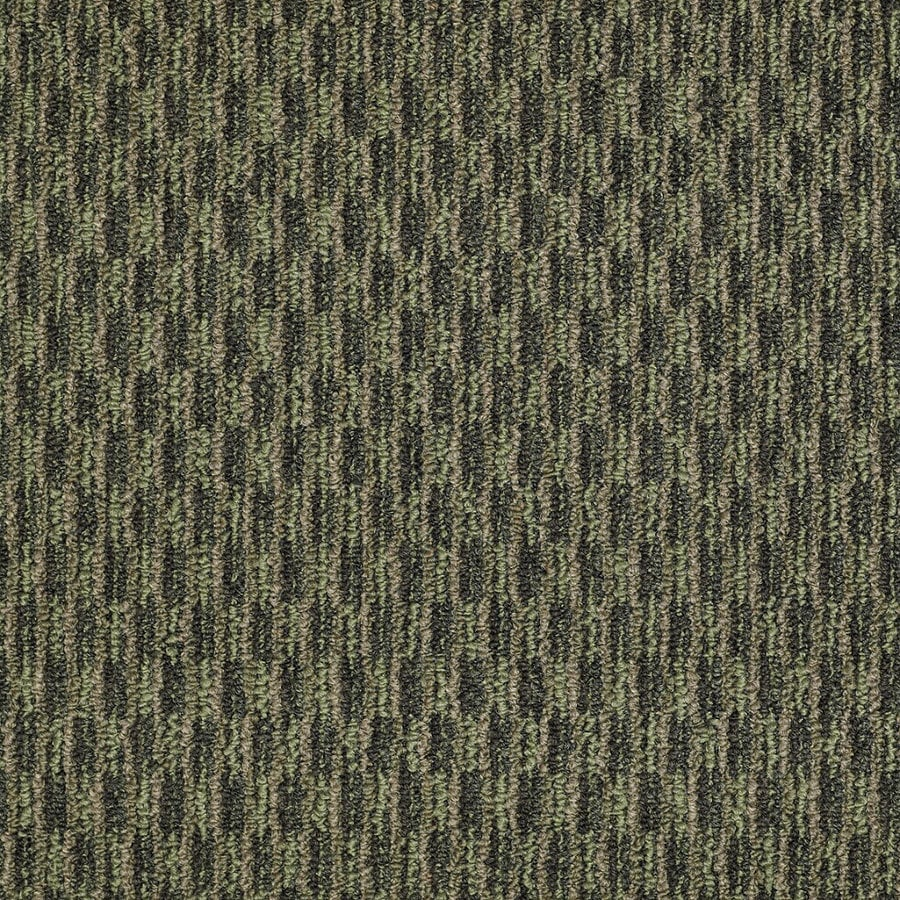 Shaw Home and Office Hedge Row Berber Outdoor Carpet