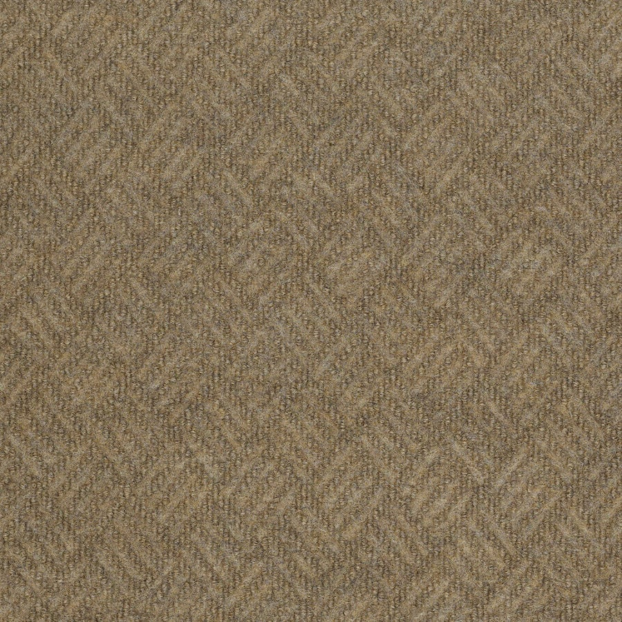 Shop shaw home and office monterey point berber outdoor for Best indoor outdoor carpet