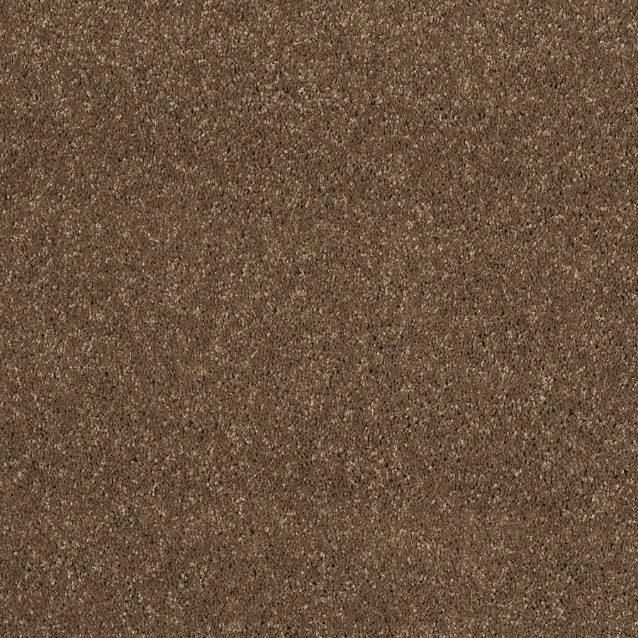 STAINMASTER Trusoft Luscious III Chestnut Textured Indoor Carpet