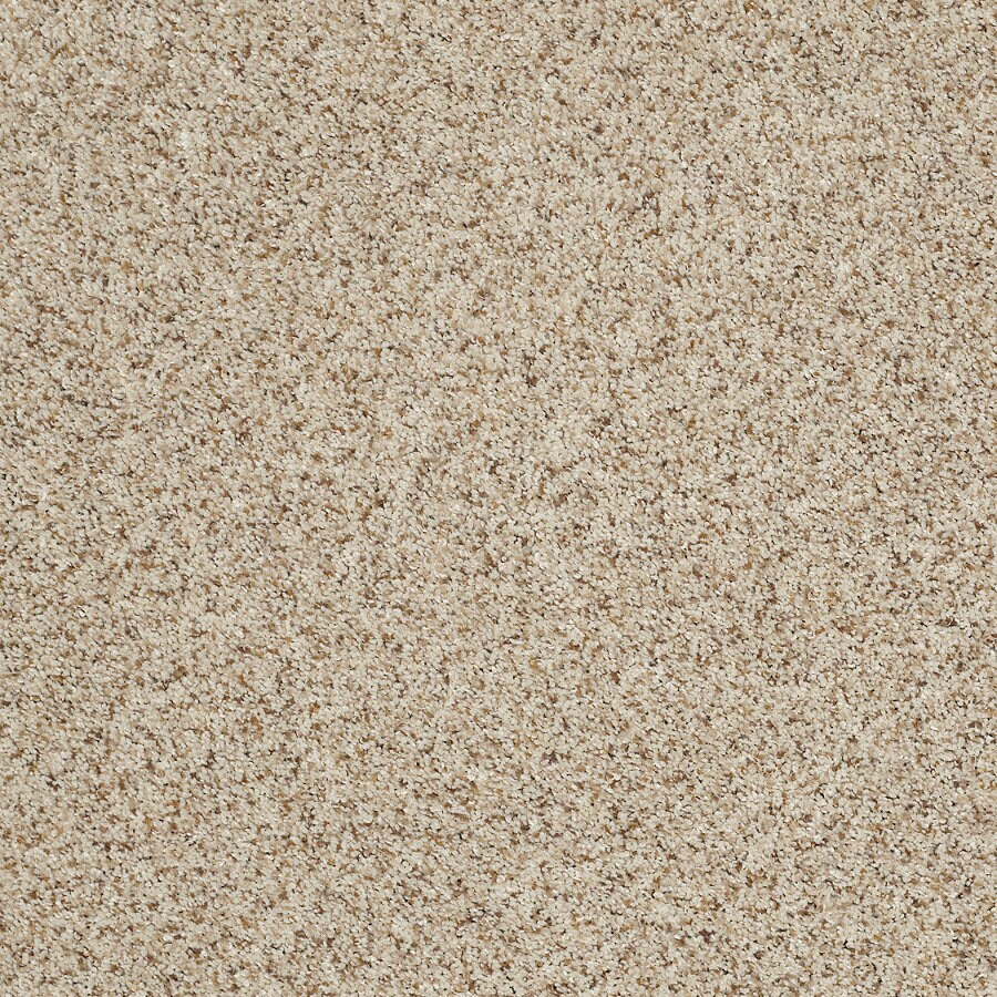 STAINMASTER TruSoft Luscious II (T) Cityscape Textured Indoor Carpet