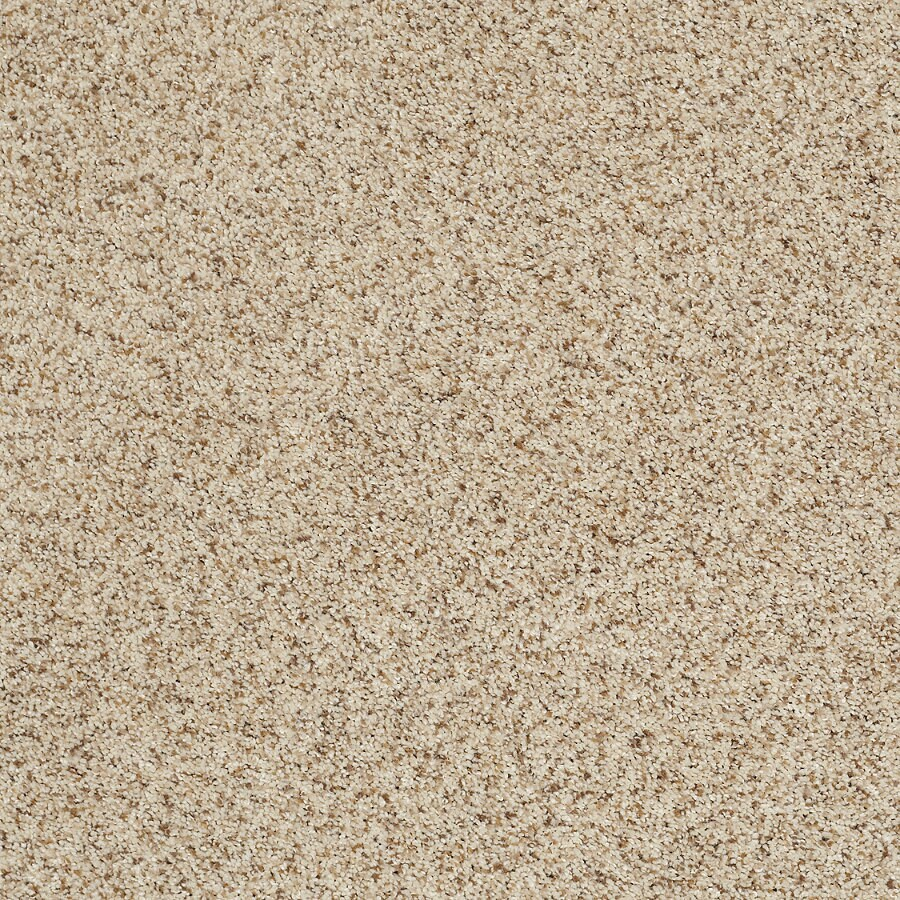 STAINMASTER TruSoft Luscious II (T) Beach Party Textured Indoor Carpet
