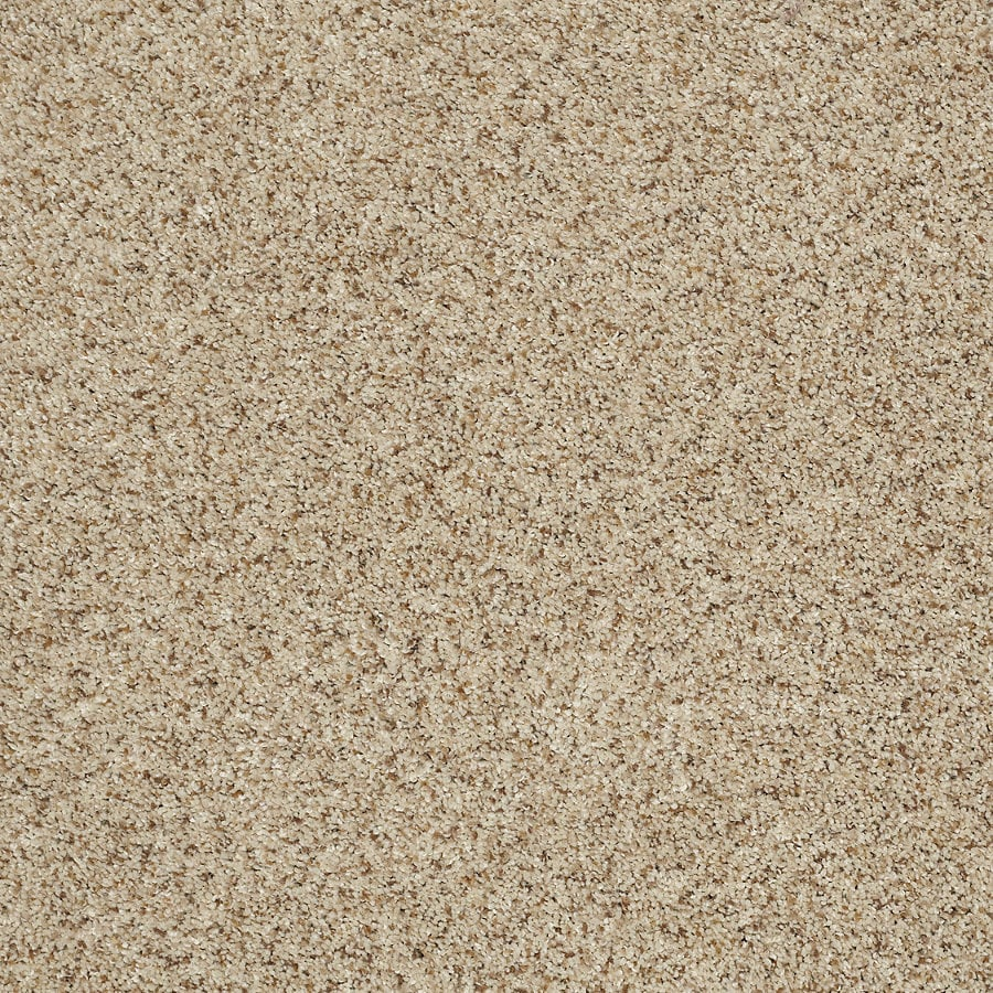 STAINMASTER TruSoft Luscious II (T) Downtown Textured Indoor Carpet