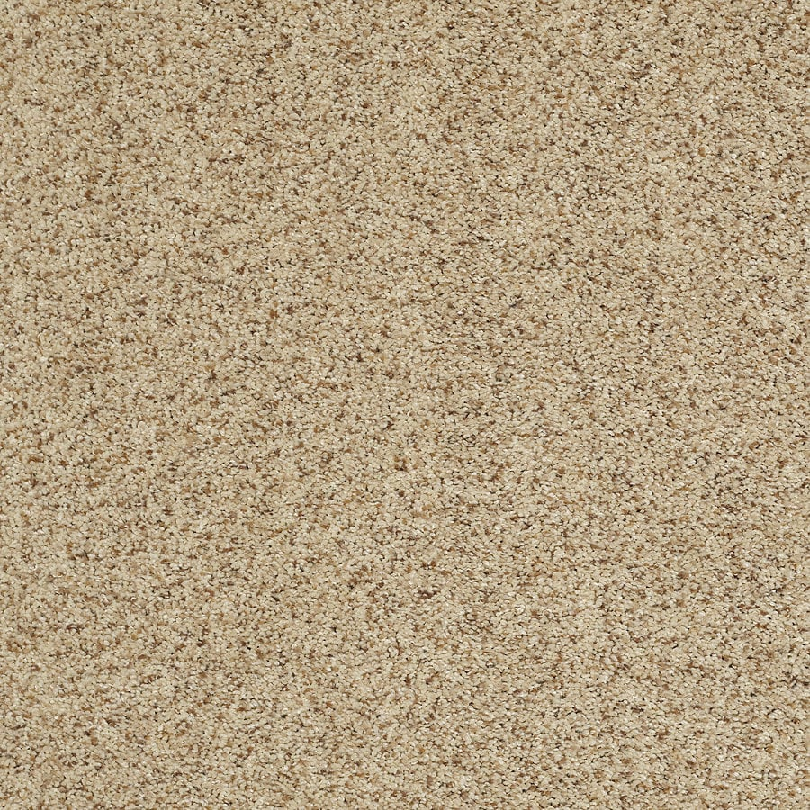 STAINMASTER TruSoft Luscious II (T) Vellum Textured Indoor Carpet
