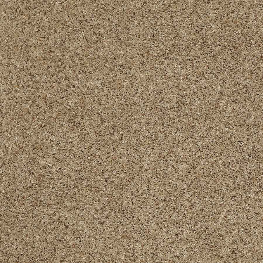 STAINMASTER TruSoft Luscious II (T) Brownstone Textured Indoor Carpet