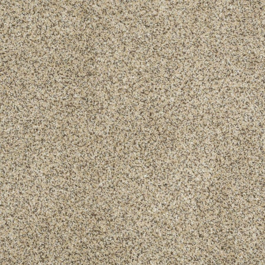STAINMASTER TruSoft Private Oasis I Bordeaux Textured Indoor Carpet