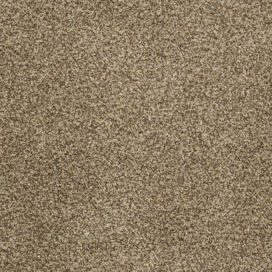 STAINMASTER TruSoft Private Oasis I Sahara Gold Textured Indoor Carpet