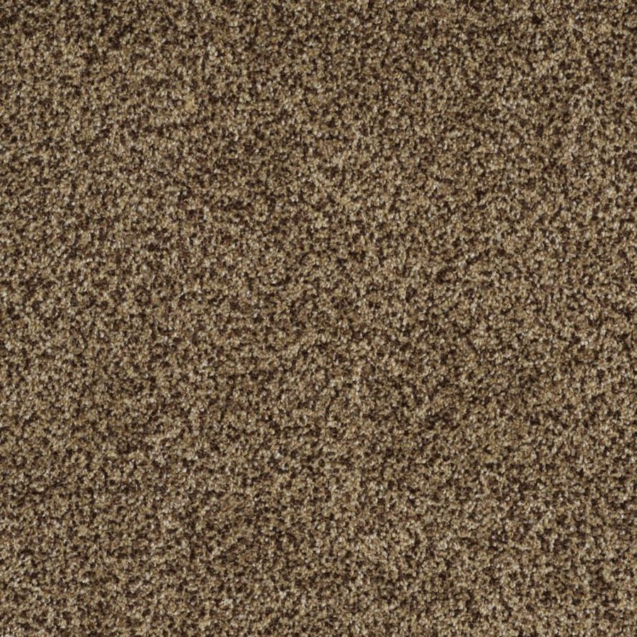 STAINMASTER TruSoft Private Oasis I Supreme Textured Indoor Carpet