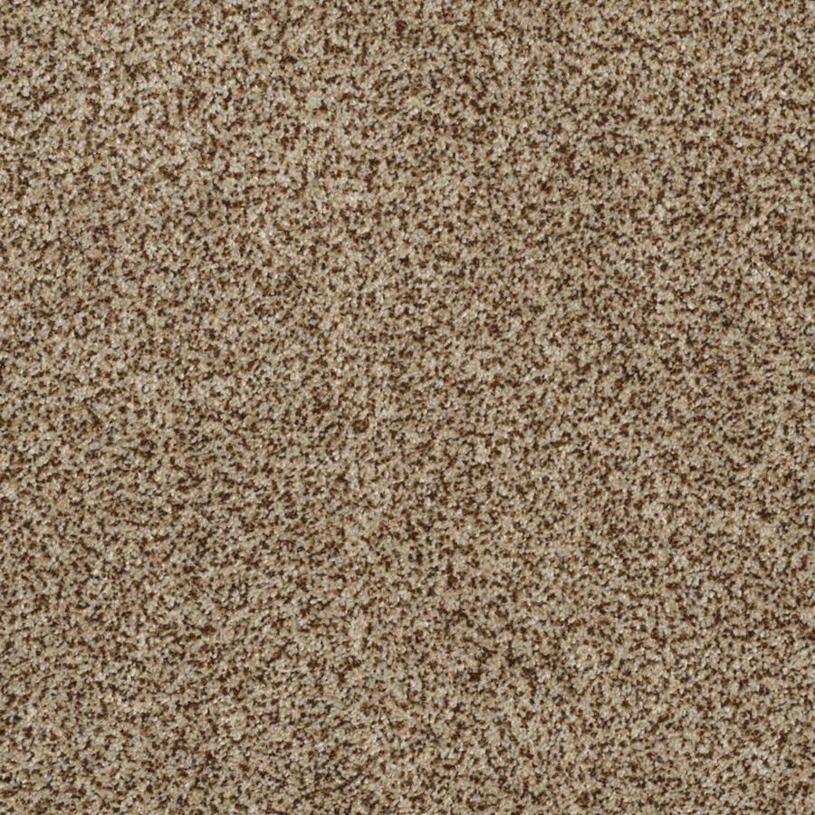 STAINMASTER TruSoft Private Oasis I Niagara Textured Indoor Carpet