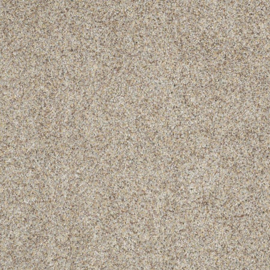 STAINMASTER TruSoft Private Oasis I Antico Textured Indoor Carpet