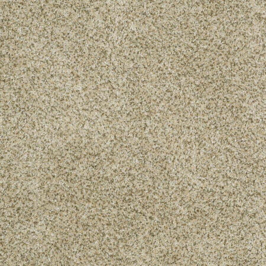 STAINMASTER TruSoft Private Oasis II Sea Foam Textured Indoor Carpet