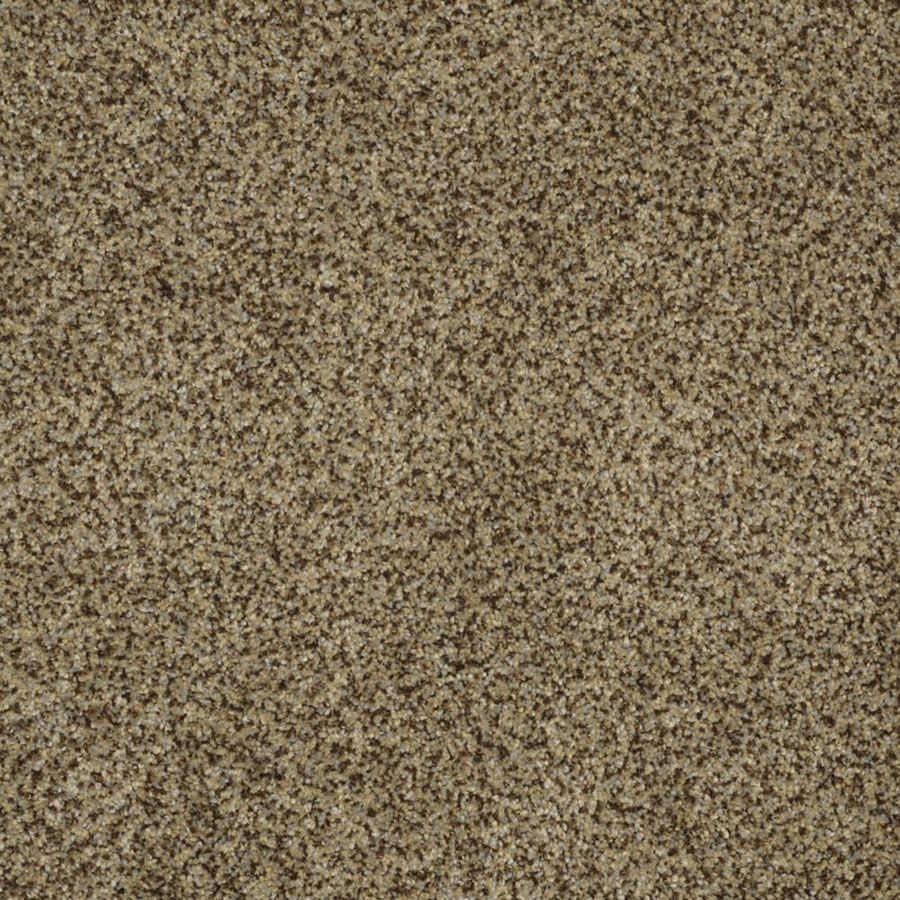 STAINMASTER TruSoft Private Oasis II Bahia Textured Indoor Carpet