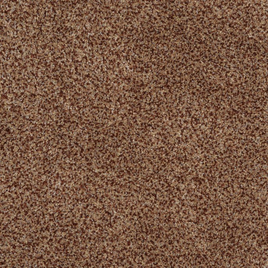 STAINMASTER TruSoft Private Oasis II Montana Textured Indoor Carpet