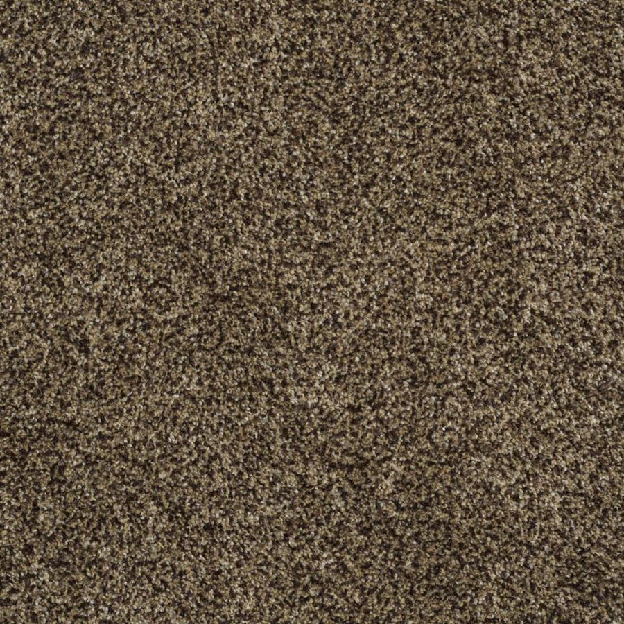 STAINMASTER TruSoft Private Oasis II Appia Textured Indoor Carpet