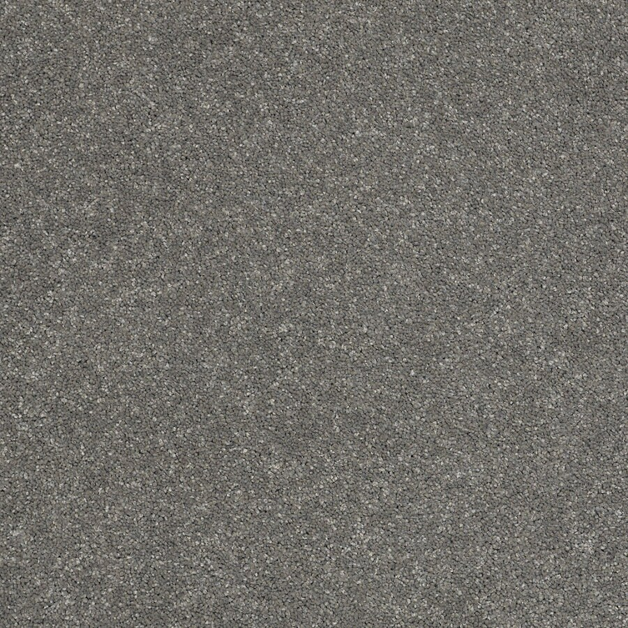 STAINMASTER TruSoft Luscious I (S) Slate Textured Indoor Carpet